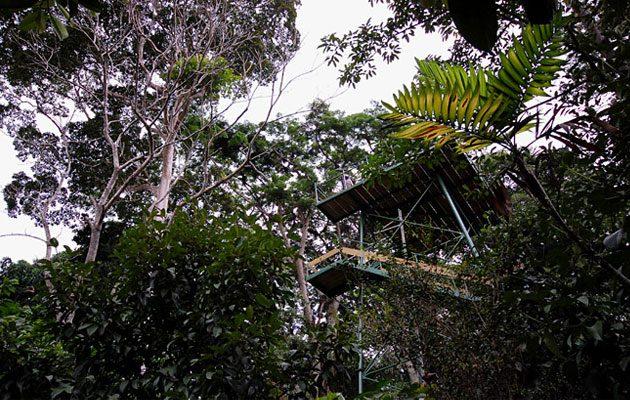 Reserva Patrocinio - foto 3