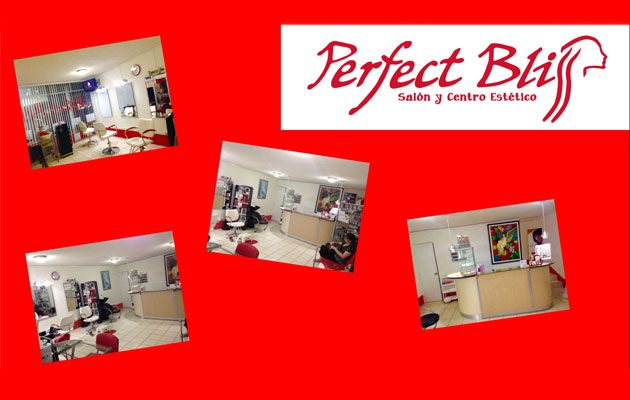 Perfect Bliss - foto 3
