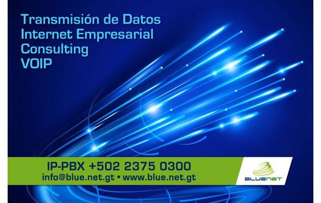 Bluenet - foto 4