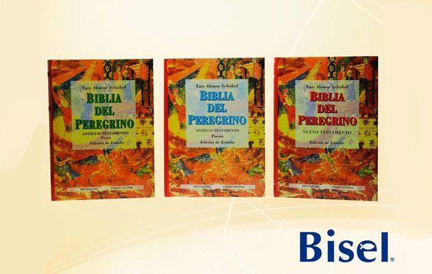 Bisel Plaza Arrazola - foto 2