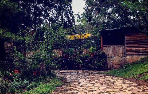 Parque Ecológico Jacarandas de Cayalá - foto 2
