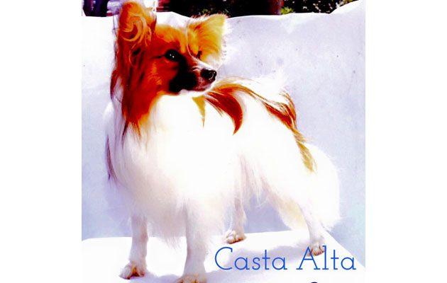 Criadero Casta Alta - foto 2