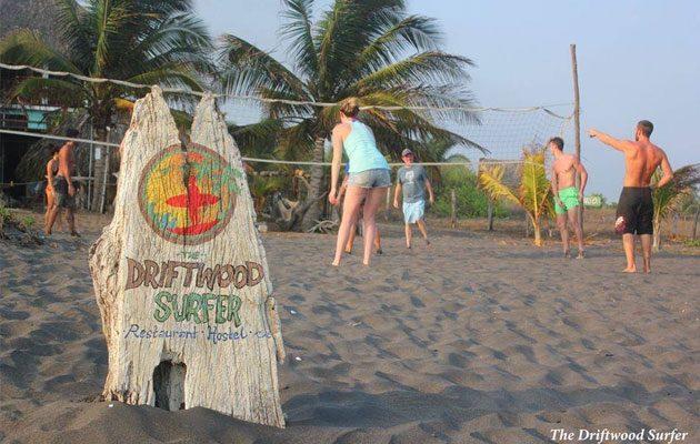 The Driftwood Surfer - foto 4