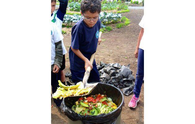 Antigua International School - foto 4