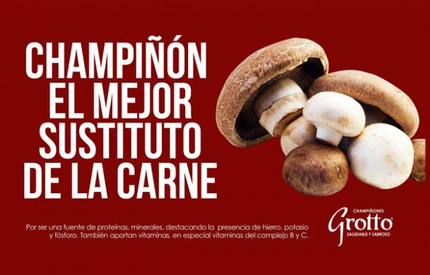 Champiñones Grotto - foto 4