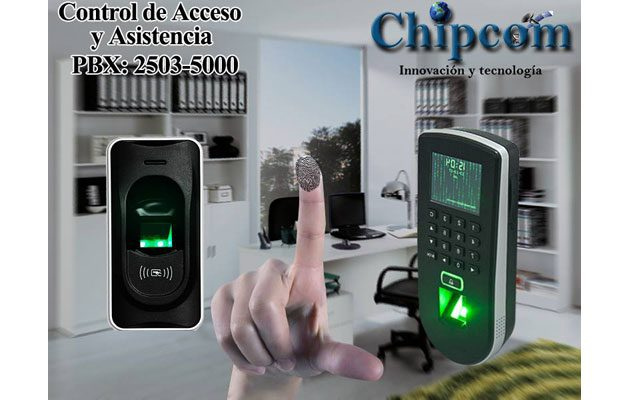 Chipcom - foto 4