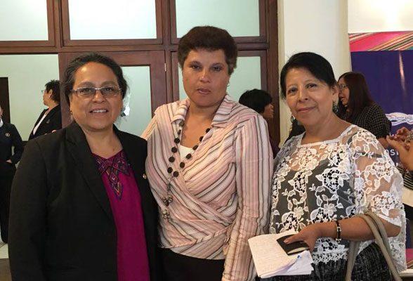 Defensoría de La Mujer Indígena - foto 3