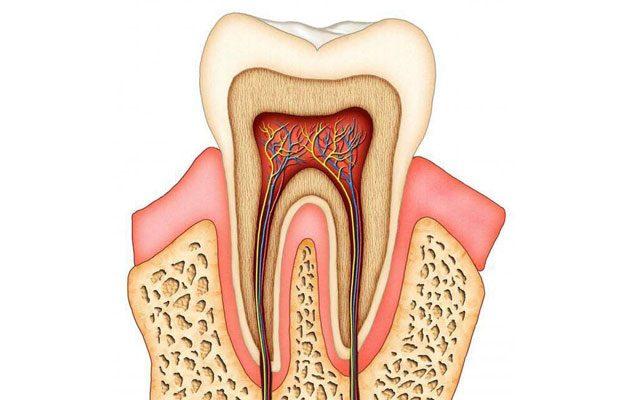 Dental Solutions Zona 8 Mixco - foto 2