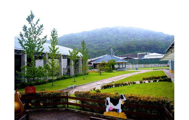 Colegio Bilingüe Los Andes - foto 3