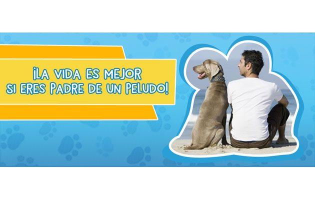 Dog Care - foto 5