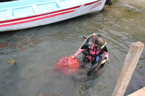 ATI Divers - foto 2