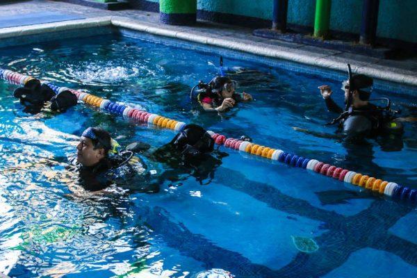 Pana Divers - foto 7