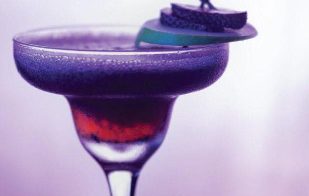 Sugar Bar - foto 3