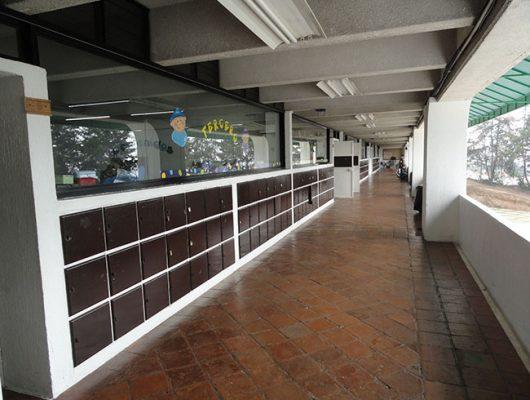 Colegio Montano Cortijo - foto 7