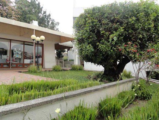 Colegio Montano Cortijo - foto 6