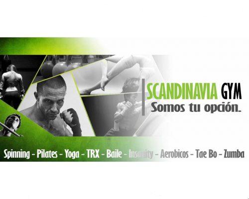 Scandinavia Gym Aguilar Batres - foto 1