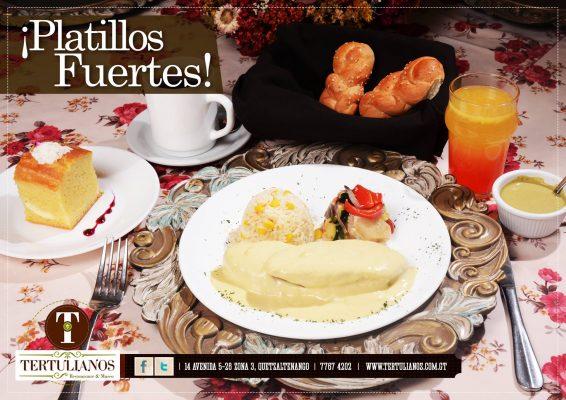 Restaurante y Museo Tertulianos - foto 3