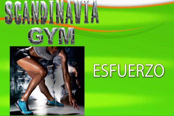 Scandinavia Gym El Naranjo - foto 4