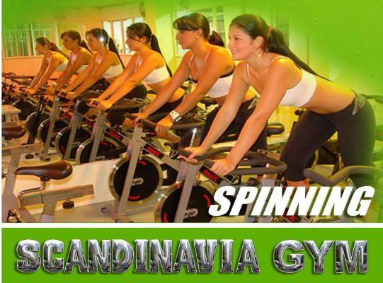 Scandinavia Gym El Naranjo - foto 3
