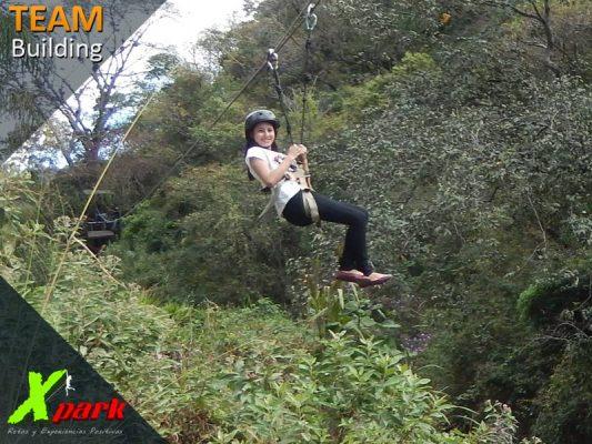 X Park - foto 5