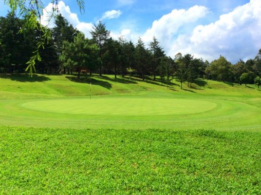 Alta Vista Golf & Tenis Club - foto 8