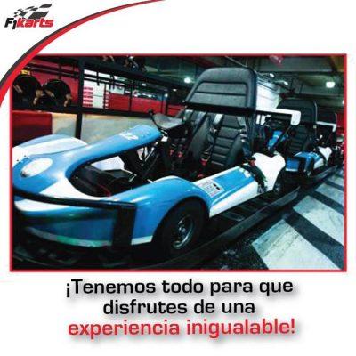 F1 Karts - foto 5