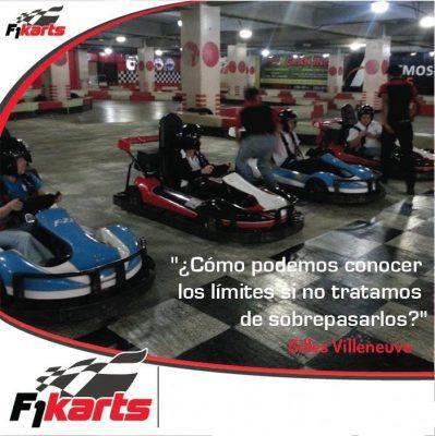 F1 Karts - foto 4