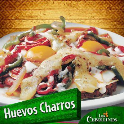 Los Cebollines Chimaltenango - foto 7