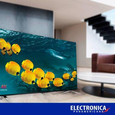 Electrónica Panamericana - foto 5