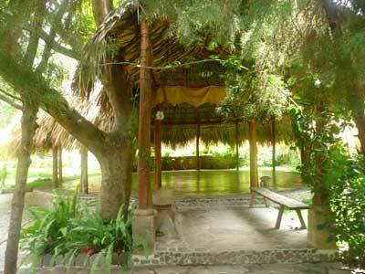 Eco Hotel La Paz San Marcos - foto 6