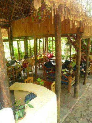 Eco Hotel La Paz San Marcos - foto 4