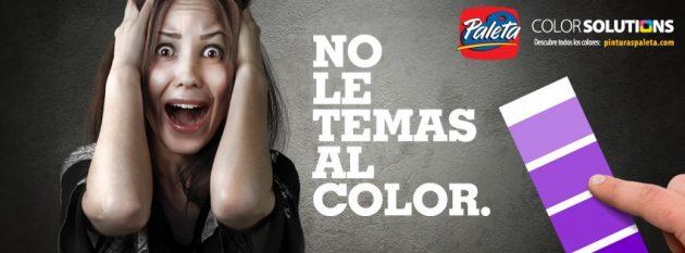 Pinturas Paleta Metrocentro - foto 5