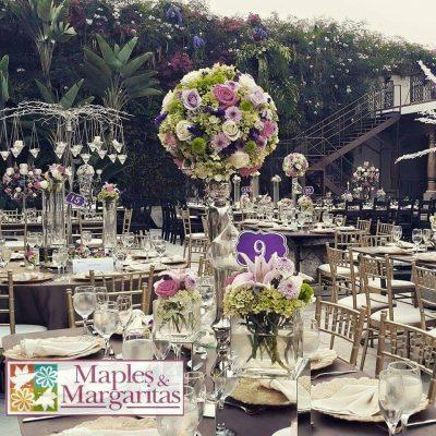 Floristería Maples y Margaritas - foto 3