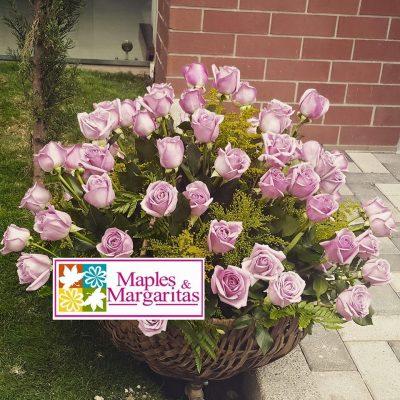 Floristería Maples y Margaritas - foto 2