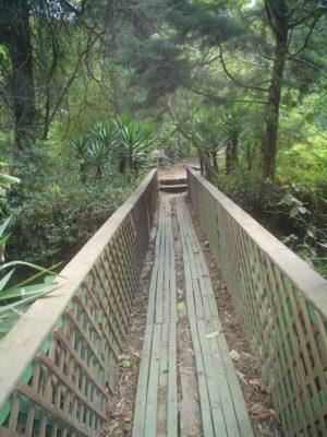 Parque Ecológico y Deportivo Cayalá - foto 3