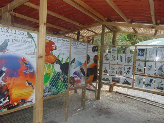 Parque Ecológico y Deportivo Cayalá - foto 2