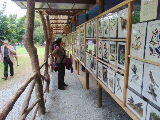 Parque Ecológico y Deportivo Cayalá - foto 1
