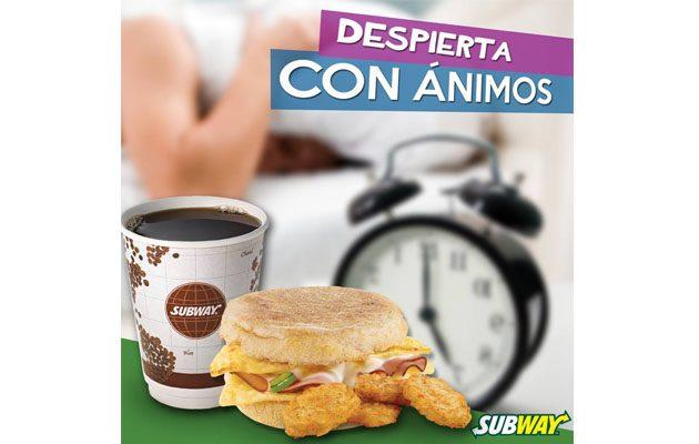 Subway Sixtino - foto 7