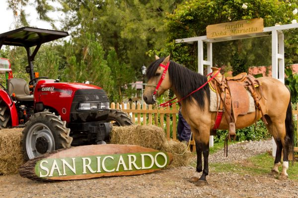 San Ricardo Farm and Lodge - foto 4