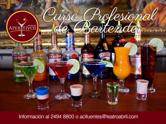Escuela Profesional de Bartenders Aperitivos Teatro Abril - foto 4