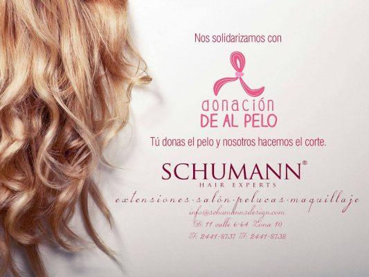 Schumann Salón - foto 2