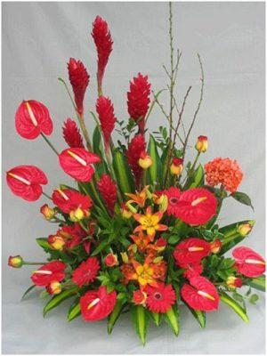 Al Natural Floristas - foto 3