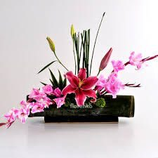 Florales Bamboo - foto 5