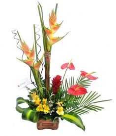 Florales Bamboo - foto 4