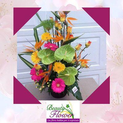 Beauty Flower - foto 1