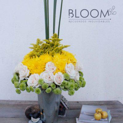 Bloom - foto 1