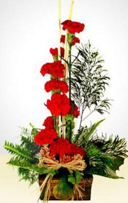 Latin Flores.com - foto 4