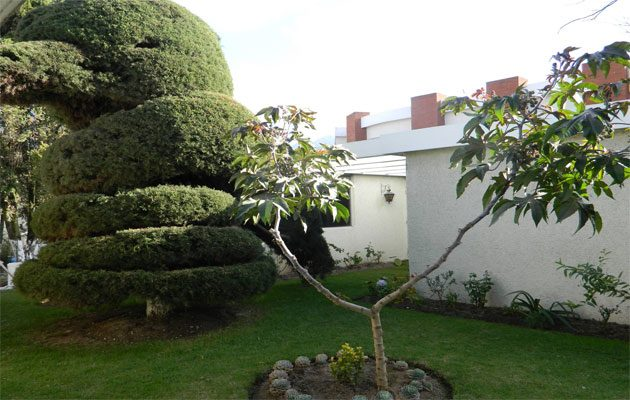 Hospital Privado Quetzaltenango S.A - foto 1