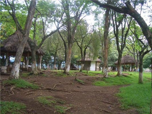 Parque Nacional Laguna del Pino - foto 5