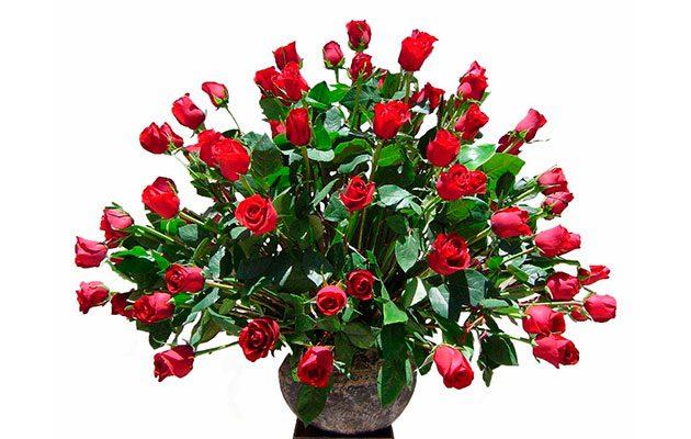 Florart-Multiservicios - foto 3